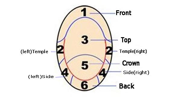 Template area distribution